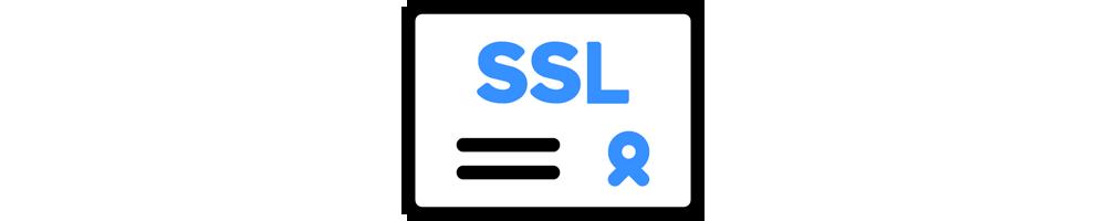 SSL estándar (1 sitio)