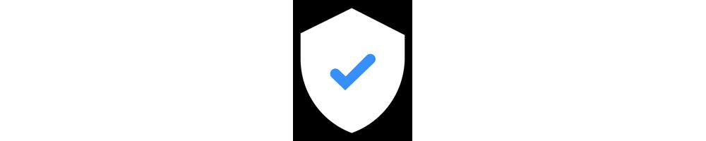 Seguridad esencial del sitio web